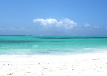 Pongwe Beach, Zanzibar. © Karen Edwards